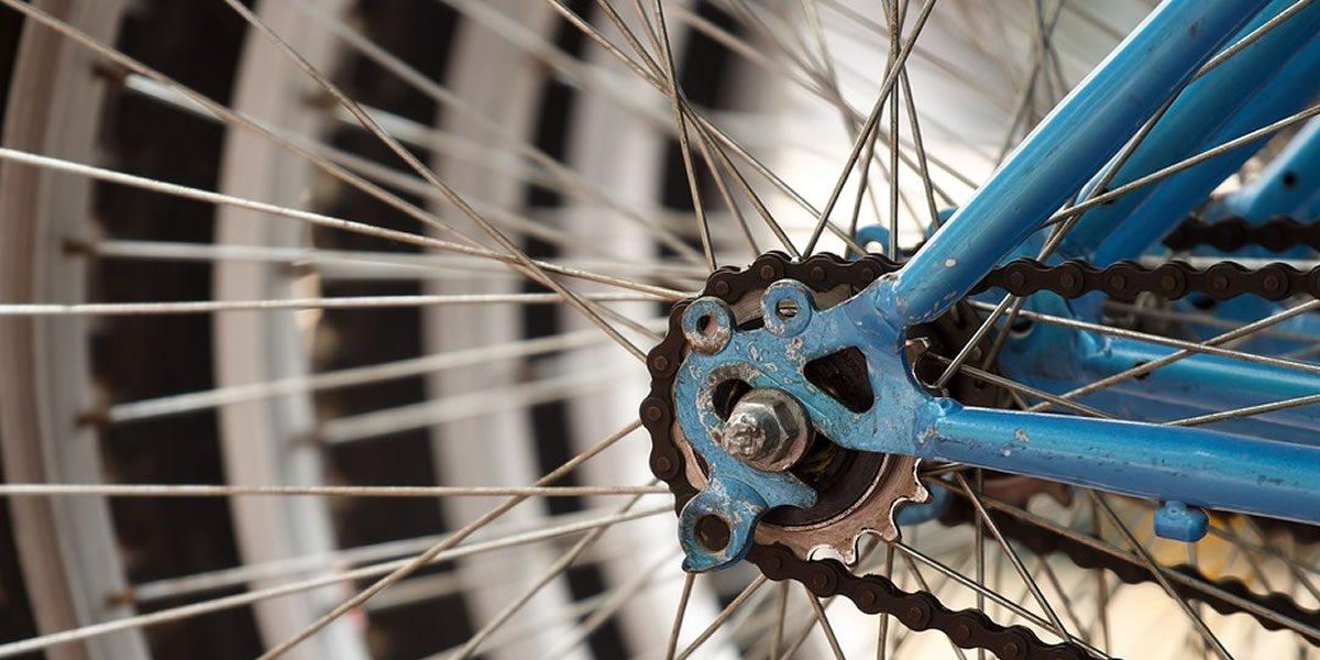 La Green Story di ForGreen, Davide Ferrara è stato intervistato per raccontare la sostenibilità di Ct Bike